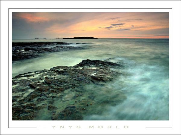 Ynys morlo by Alfoto