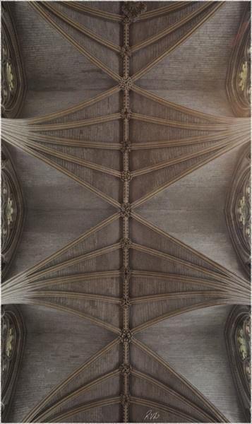 Symmetry by Doglet