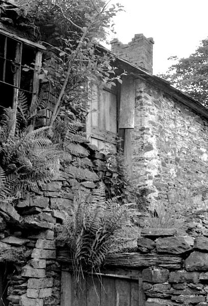 Ruin by Willmer
