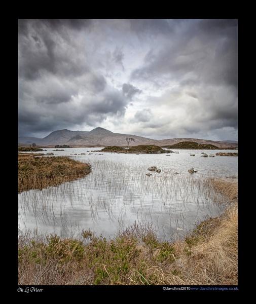Oh La Moor by Tandberg