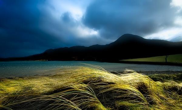 Windy Day by chazcherry