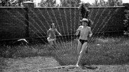 Summer joys
