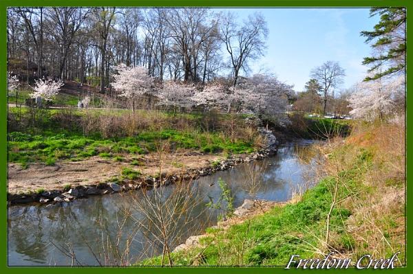 Freedom Creek by PeelNStick
