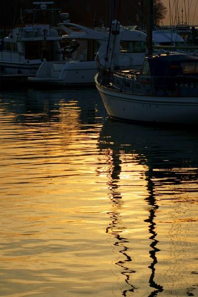On Golden............... by morpheus1955