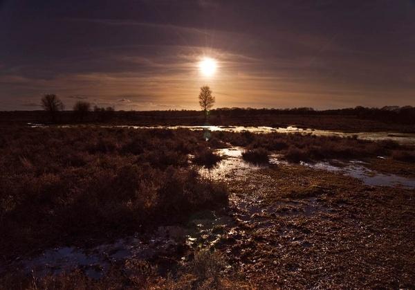 Setting Sun by tavm