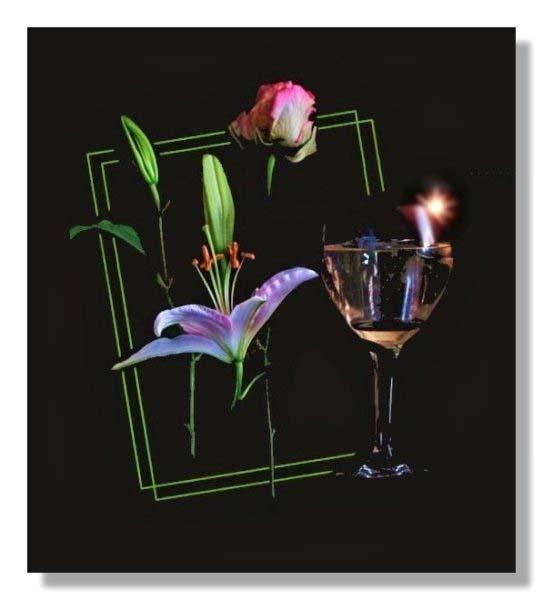 Glass flowers by gerrymac