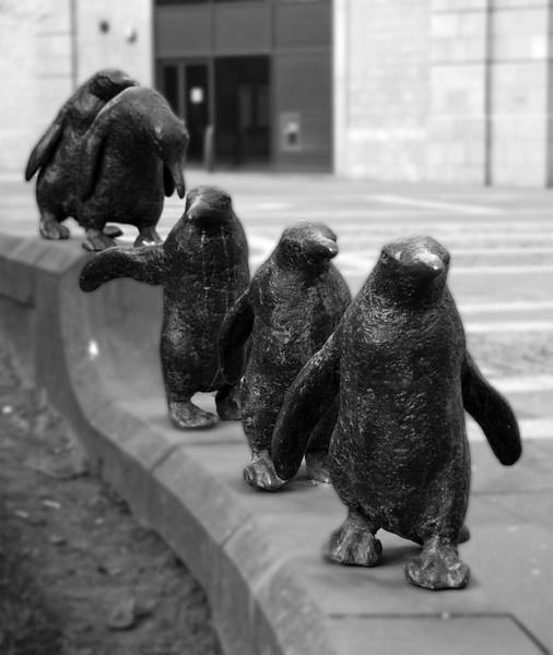 Pick Up a Penguin by McBunny1972