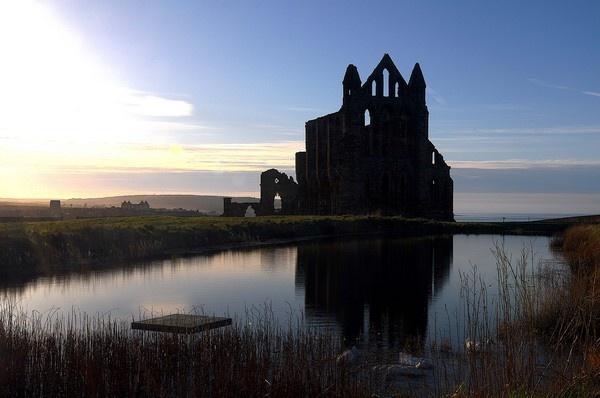 whitby abbey by wisp
