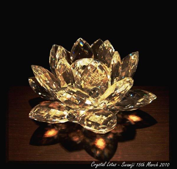 Crystal lotus by Swamiji