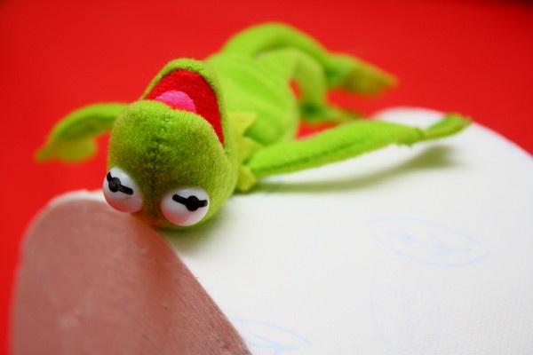 kermit with toilet paper roll 2 by dEOSnnis70