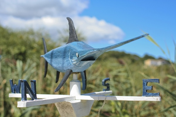 Swordfish Wind Vane by ggaerlan