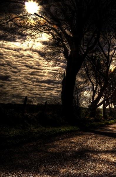 Sunrise in Benagah Glen by taylortopcat