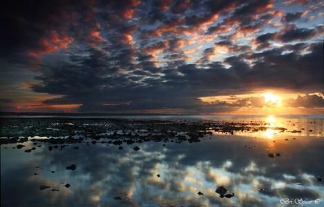 Dawn Suprise by Brian14