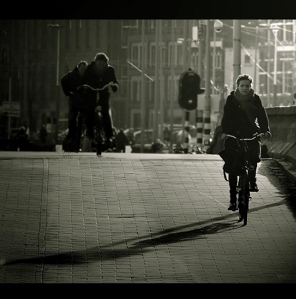 Light Cycle.... by woodlark
