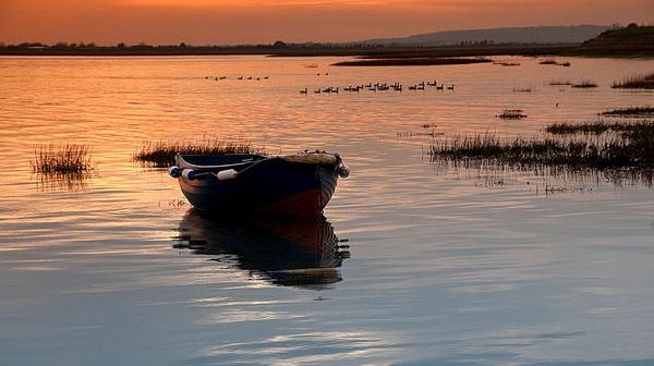 On golden Pond by jennialexander