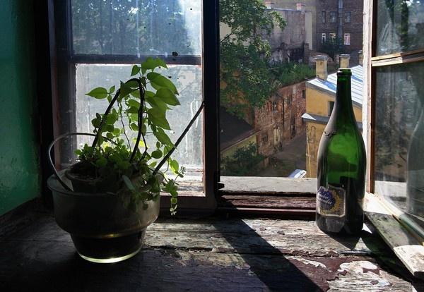 Still life on the 6th floor by IgorDrankin
