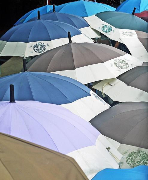 umbrella Buts whatÂ's underneath by StevenBest