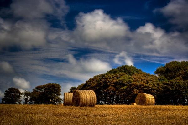 Hay Bale HDR by DexlaMedia