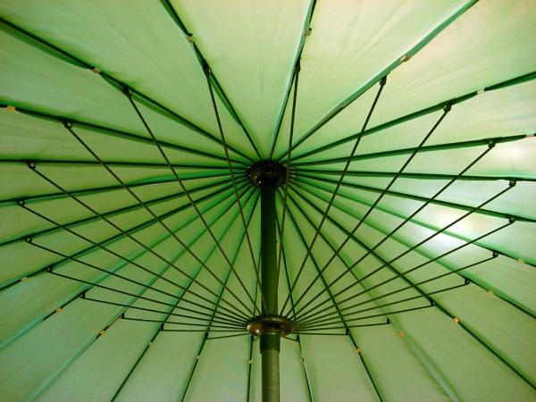 The Green Umbrella by StevenBest