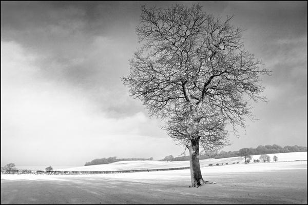 Wintersun by KevSB