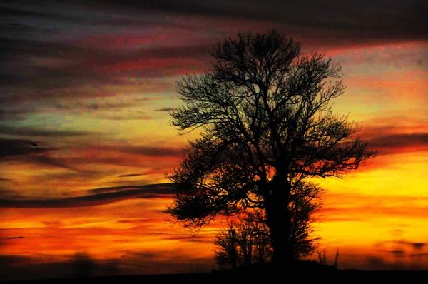 Sunset in a field in Devon by sevenmalt