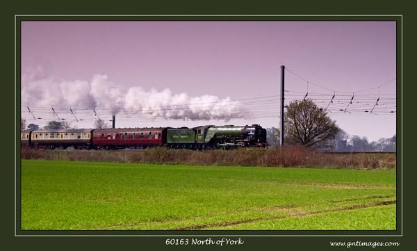 60163 North of York by GlynnisFrith