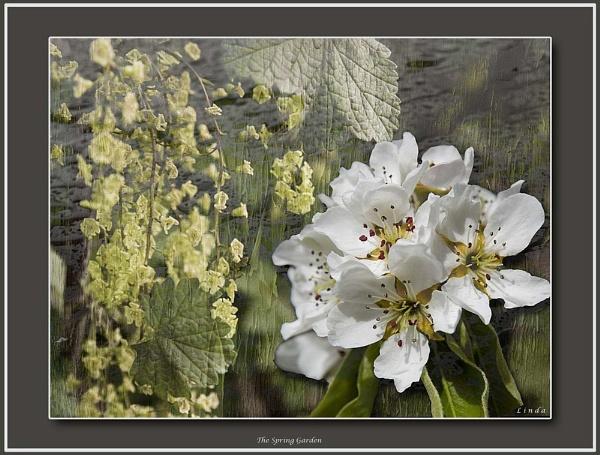 *The Spring Garden by Mynett