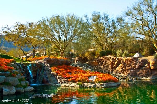 Flowered Waterfall by ABurke