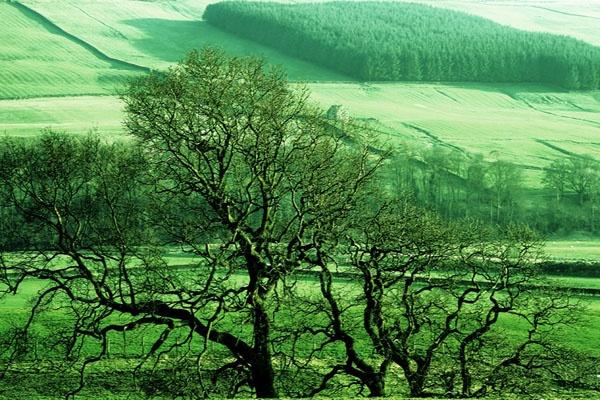 Northumberland by LUBA123