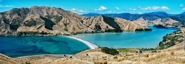 Cable Bay, South Island New Zealand