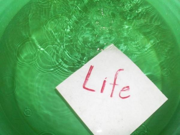 life by sumeera