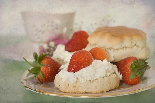 Cream Tea by Fishnet