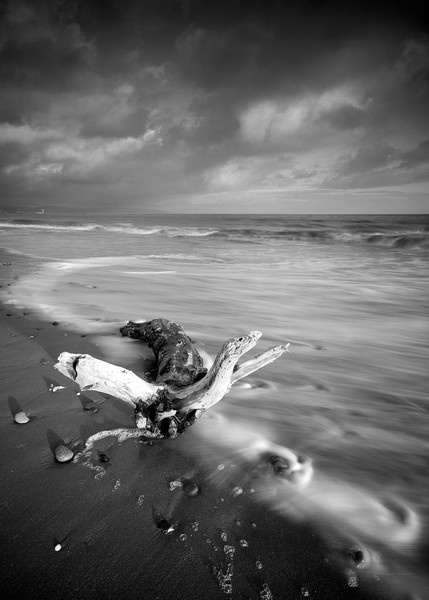 Washed up - B&W by olbell