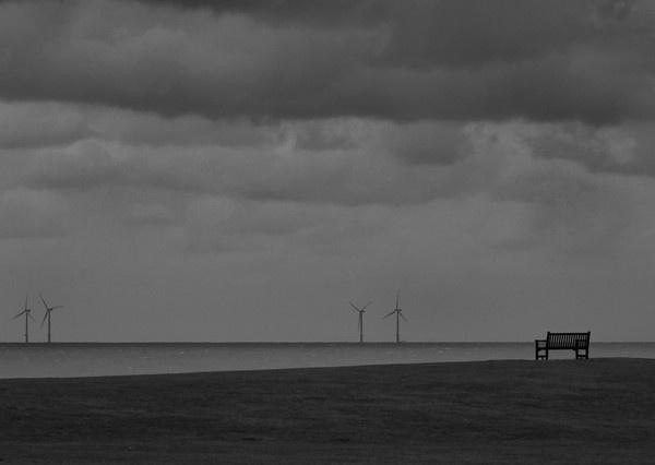 Stormy Frinton by pmaccyd