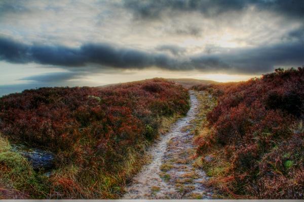 Patway to Stoneyman by Beladd