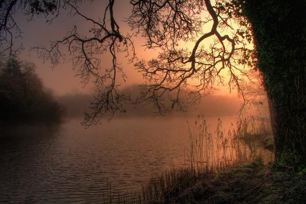 Misty Morn Emo Dawn by Beladd