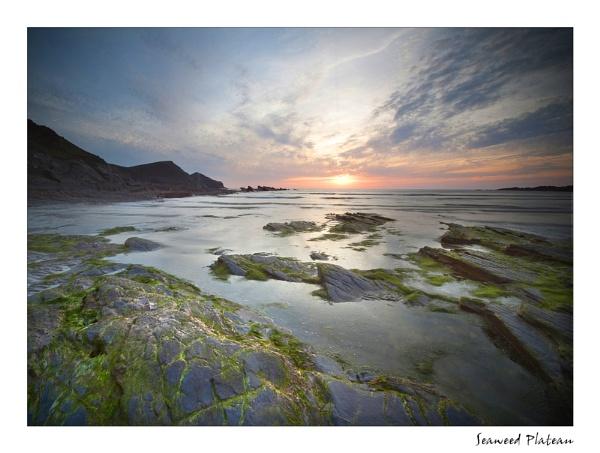 Seaweed Plateau by angej