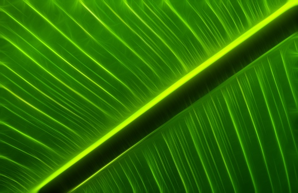 Abstract Greens 2 by baclark