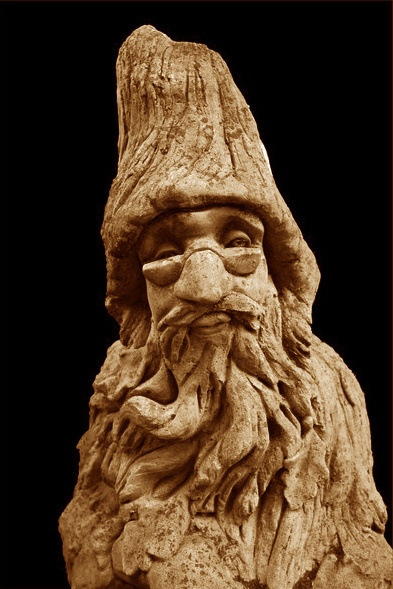 Wood Wizard by Ben10