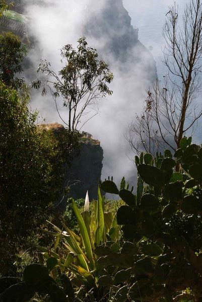 Madeira Island by Ken_Dickson