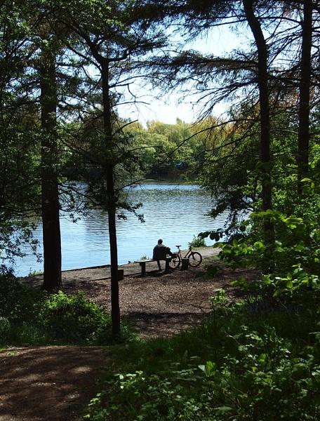 Watching The Lake by chensuriashi
