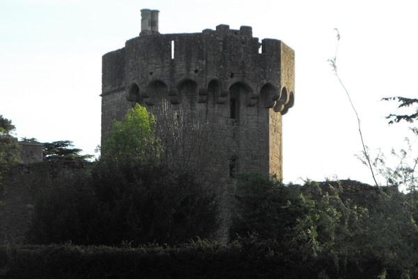 caldicot castles by jones21