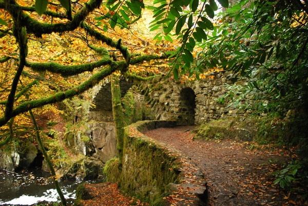 Secret Garden by Agate