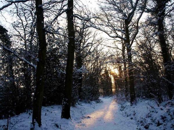 Winter Fear by jessikerr