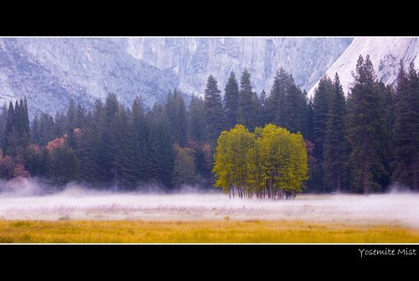 Yosemite Mist by stevie