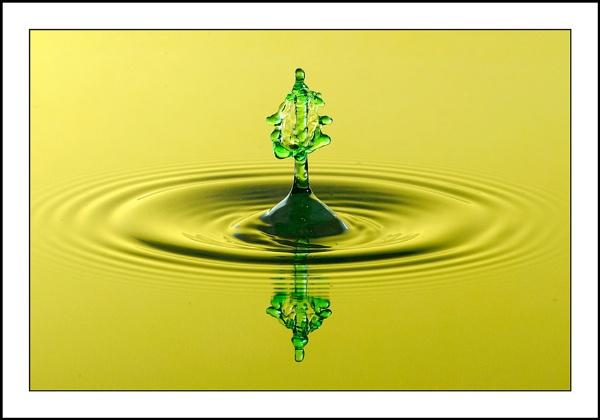 Green Splash by csurry