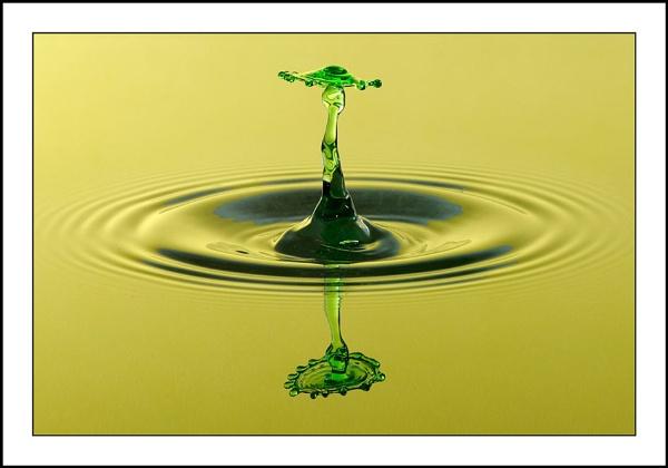 Green Splash II by csurry