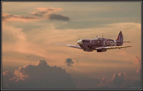 Spitfire Season (7) by patspeirs