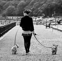 Fille et ses deux chiens