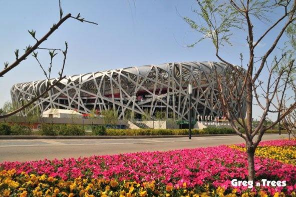 Birdnest Stadium - Beijing by GregnTreesPhotography